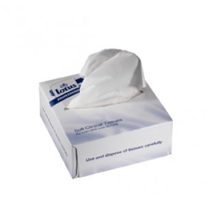 Lotus Professional Clinical Wipes 2ply